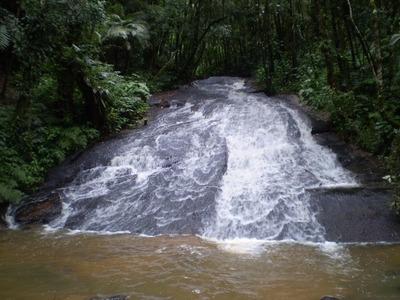 Fazendinha 19,5 Alqueires Ibiuna Rica Em Agua,lindo Lago