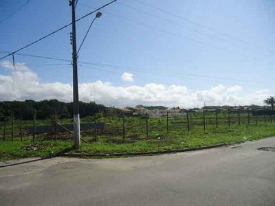 Excelente Área A 500 Metros Da Praia 6.850.05 M²