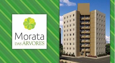 Apartamento Para Alugar São Mateus Novo Particular Morata