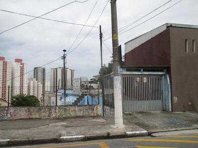 Terreno / Baeta Neves - Sbc - 1033-1-122186