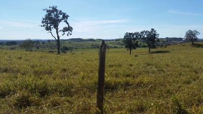 Terrenos - Lotes À Venda - Rodovia Castelo Branco - Mairinqu