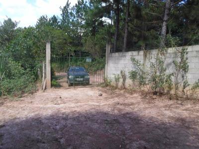 Juquitiba - Chacara Com Área Para Plantio Ref: 03980
