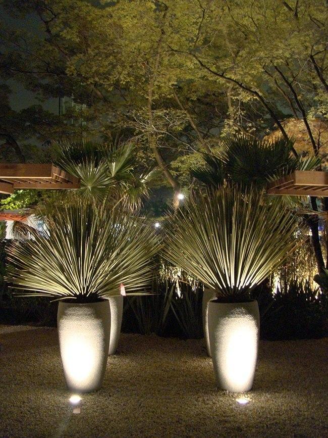 iluminacao para jardim mercado livre ? Doitri.com